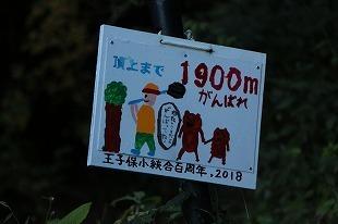s-IMG_0456.jpg