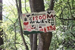 s-IMG_1200.jpg