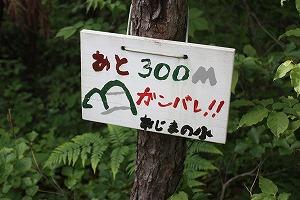 s-IMG_300.jpg