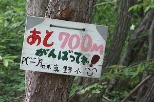 s-IMG_700.jpg