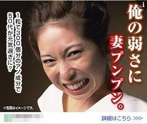 kyowa3.jpg