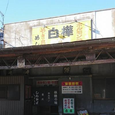 s-11768.jpg