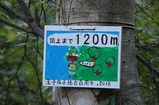 s-IMG_0475.jpg