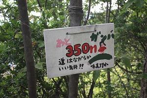 s-IMG_350.jpg