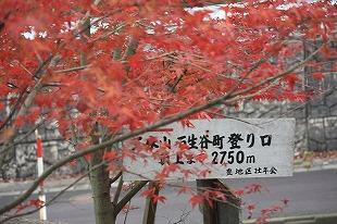 s-IMG_3633.jpg