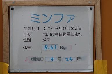 s-IMG_3772.jpg