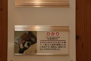 s-IMG_3923.jpg