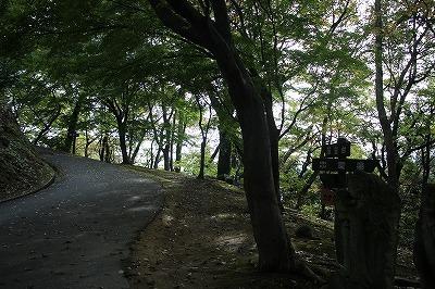 s-IMG_4941.jpg