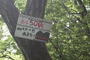 s-IMG_500.jpg