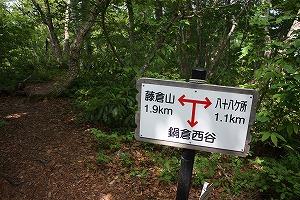 s-IMG_8398.jpg