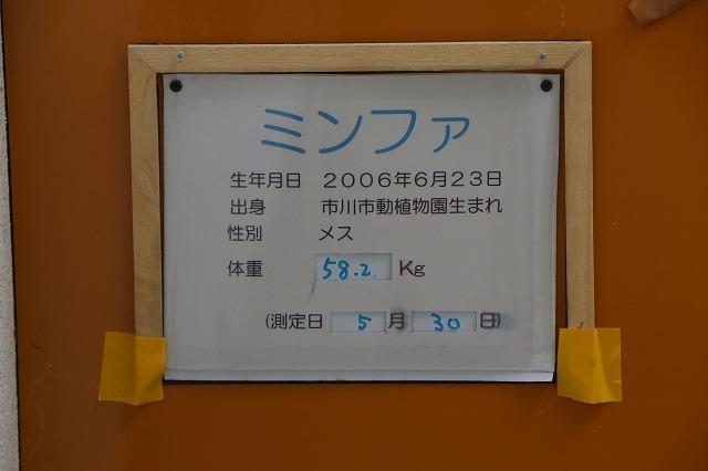 s-IMG_8708.jpg