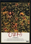 s-sunflower.jpg