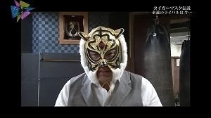 s-tiger26.jpg
